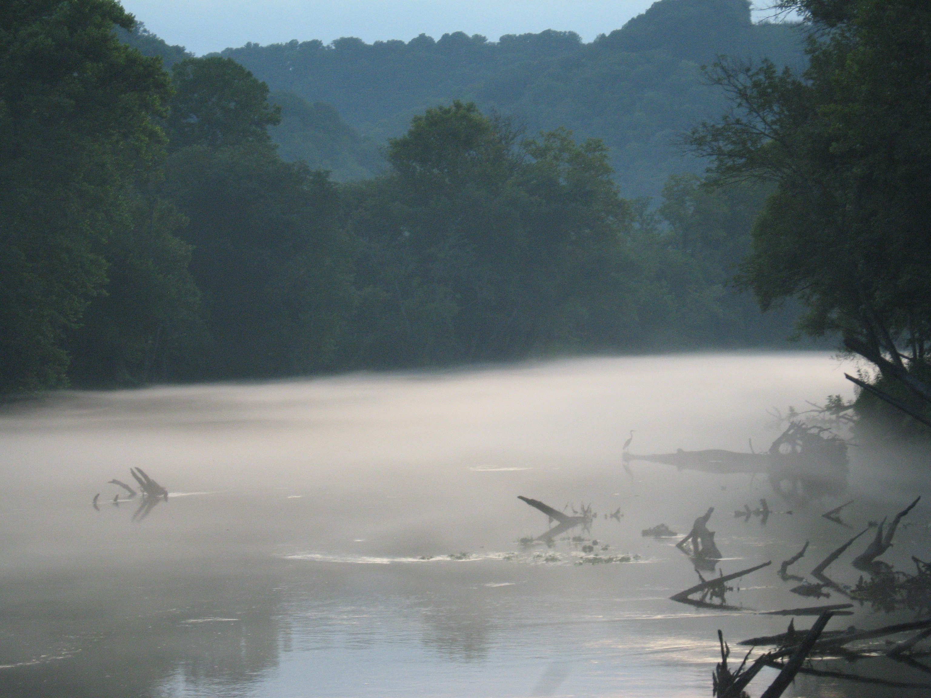 Buzzdflyfishing caney fork river for Center hill lake fishing report
